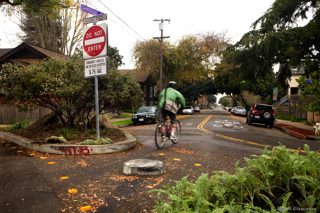 Bicycle boulevard in Berkeley. (Image from Carrie Cizauskas, via flickr.)